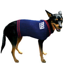 New York Giants NFL Dog Sweater