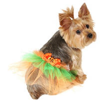 Orange Pumpkin Dog Tutu