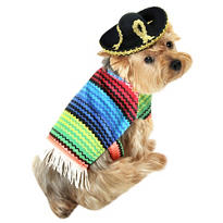 Amigo Dog Costume