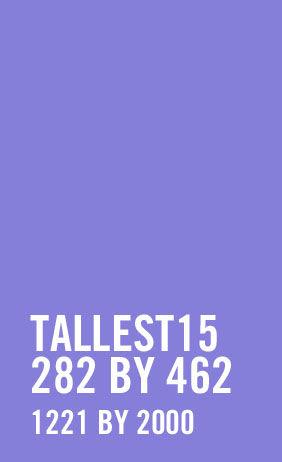 Adult Purple & Black Striped Tights Plus Size