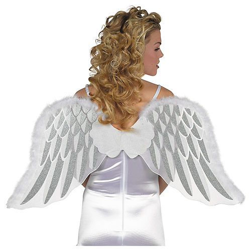 37214f04950f Costume Wings - Angel Wings, Fairy Wings & Butterfly Wings | Party City