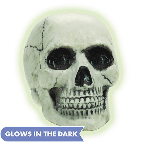 Glow-in-the-Dark Skull 7in x 6in | Party City
