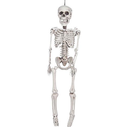 realistic hanging skeleton